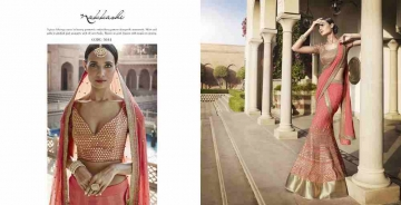 Grandeur-By-Nakkashi-Indian-Royal-Traditional-Heavy-Embroidered-Party-wear-Occasional-Wear-Wedding-Wear-Georgette-Sarees-5044
