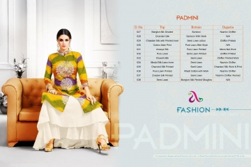 padmini-angroop-plus-wholesaleprice-fabric