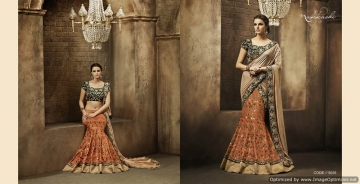 Royal-Prestige-By-Nakkashi-Indian-Stylish-Traditional-Occasional-Wear-Party-Wear-Embroidered-Chiffon-Sarees-B2B-5035