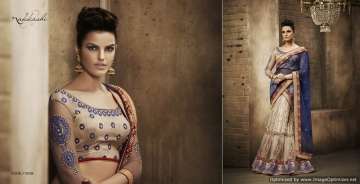 Royal-Prestige-By-Nakkashi-Indian-Stylish-Traditional-Occasional-Wear-Party-Wear-Embroidered-Chiffon-Sarees-B2B-5039
