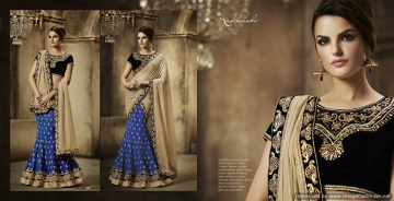 Royal-Prestige-By-Nakkashi-Indian-Stylish-Traditional-Occasional-Wear-Party-Wear-Embroidered-Chiffon-Sarees-B2B-5041