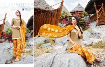 Sunday-Patiyala-16-Rani-Print-Wholesaleprice-16003