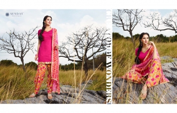 Sunday-Patiyala-16-Rani-Print-Wholesaleprice-16007