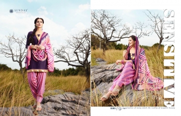 Sunday-Patiyala-16-Rani-Print-Wholesaleprice-16016