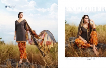 Sunday-Patiyala-16-Rani-Print-Wholesaleprice-16018
