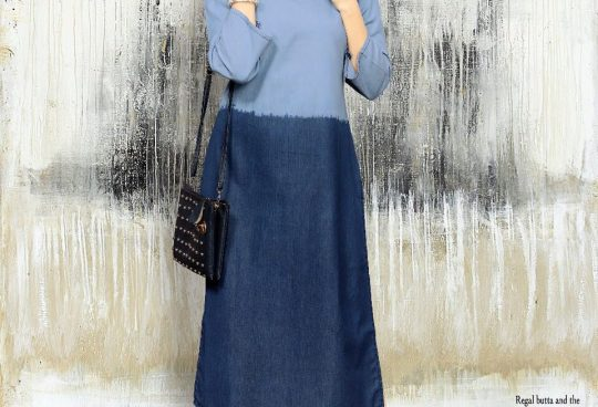 26a42d55d6 DENIM CLUB BY 12 ANGEL 1001 TO 1012 SERIES STYLISH FANCY BEAUTIFUL COLORFUL  CASUAL WEAR   ETHNIC WEAR DENIM COTTON KURTIS AT WHOLESALE PRICE
